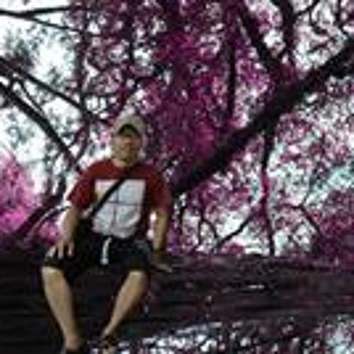 Ari Sarasto's avatar
