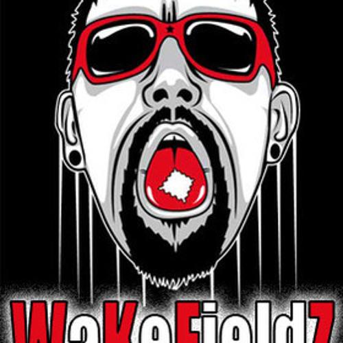 WaKeFieldz (AstroFoniK Rec / OVNI Rec)'s avatar