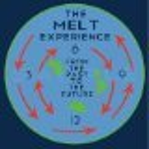 The Melt Experience's avatar