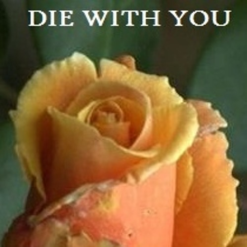 Die With You's avatar