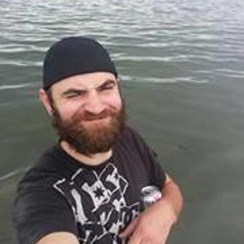 D Levek's avatar