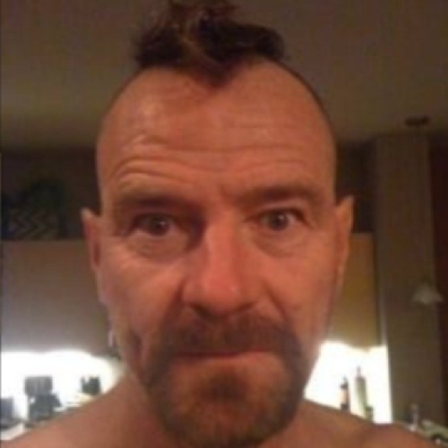 bryan cranston's avatar