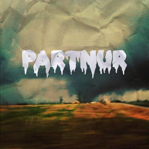 PARTNUR's avatar