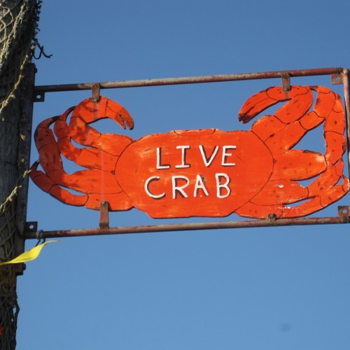 The Living Crabs (AUS)'s avatar