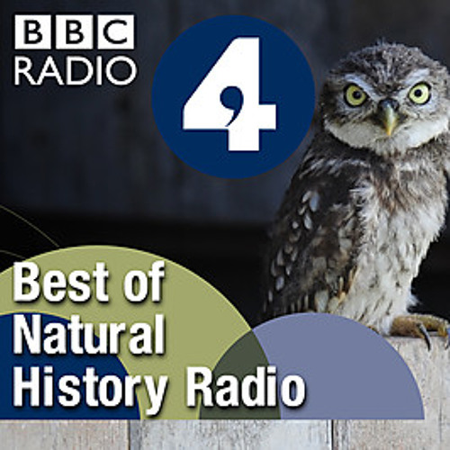Best Of Natural History's avatar