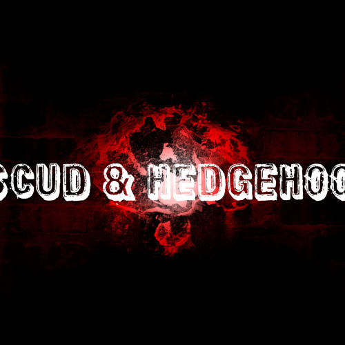 SCUD & HEDGEHOOK's avatar