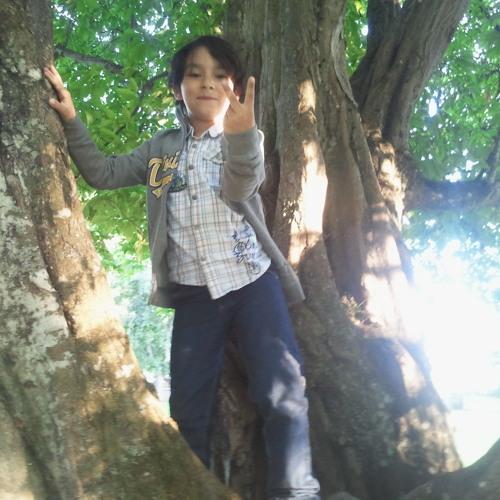 alshami3's avatar