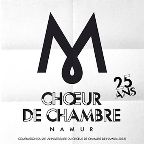 chamberchoirnamur25's avatar