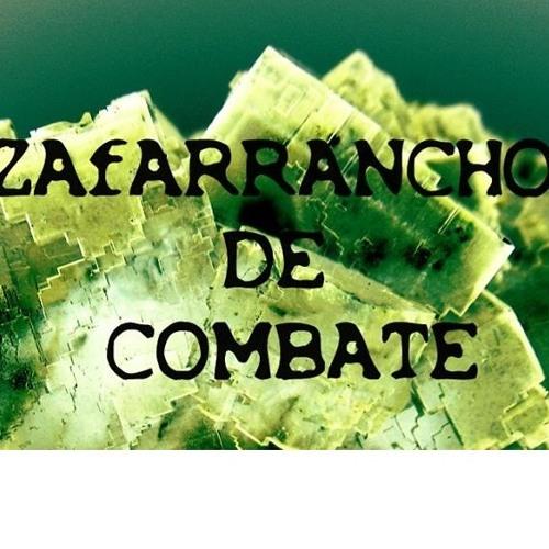 Zafarrancho de combate's avatar
