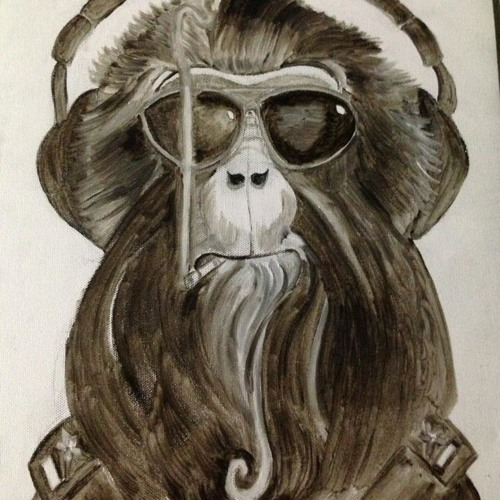 DJ Bass Monkey's avatar