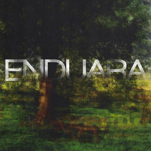 Enduara's avatar