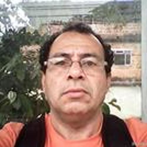 Luiz Carlos 119's avatar