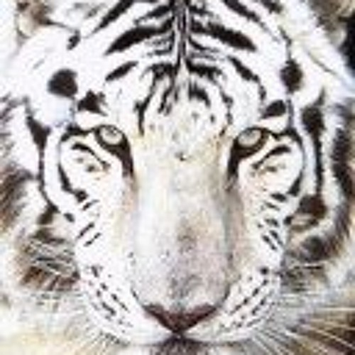 jerami's avatar