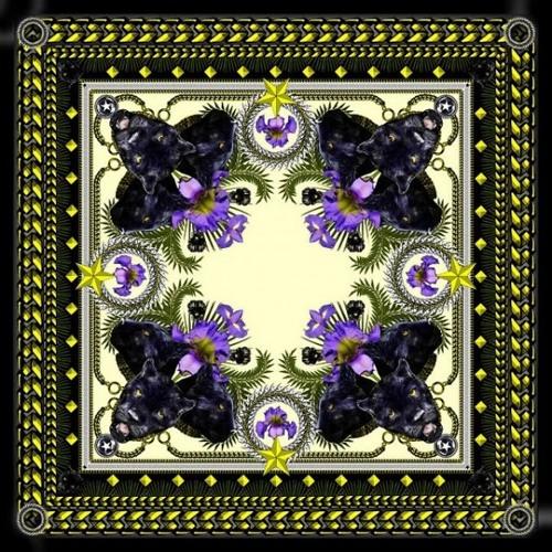 BLVCK SVPPLY's avatar