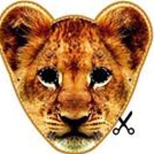 Bruno Damarajo's avatar