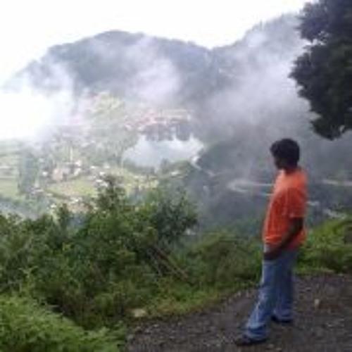 Dinesh Gundu's avatar