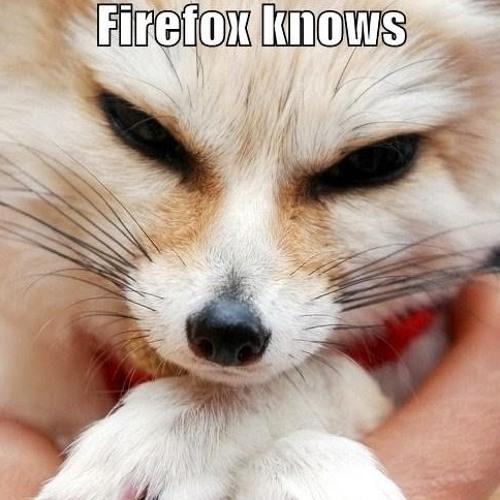 """Spotz """"aholic"""" fur's avatar"""