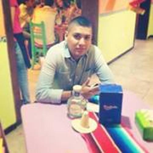 Jose Luis 276's avatar