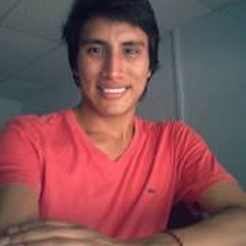 Cristhian Castro Martinez's avatar