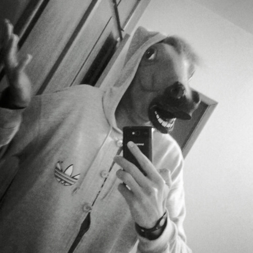 froozer's avatar