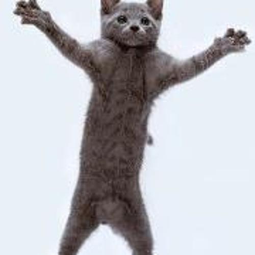 Jafi Giler's avatar