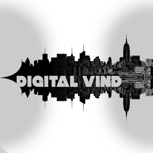 Digital Vind Records's avatar
