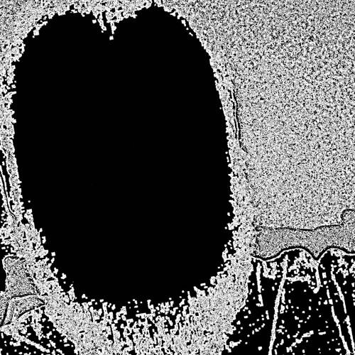 (dis)Temporal's avatar