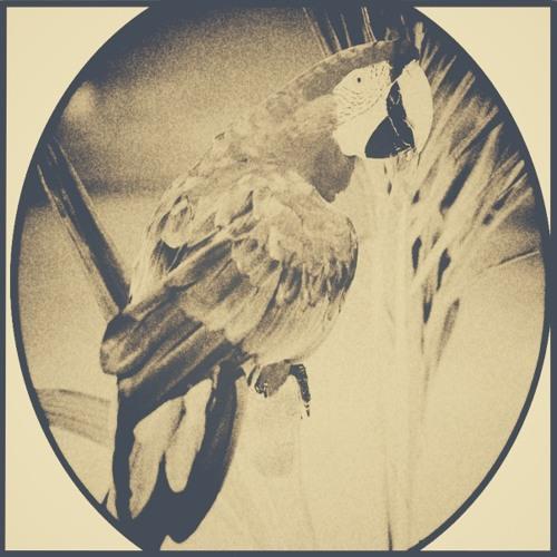 perroquet's avatar