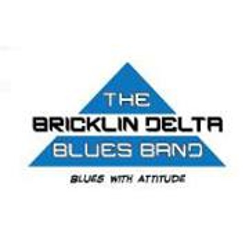 Bricklin Delta Blues Band's avatar