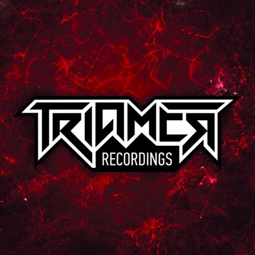 TriaMer recordings's avatar