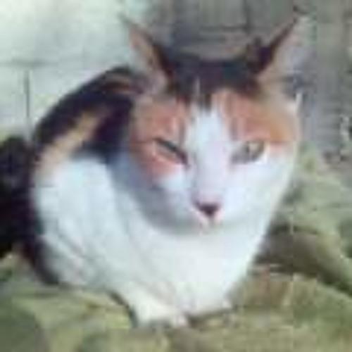 Az love's avatar