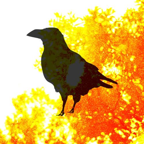Wintermachine's avatar