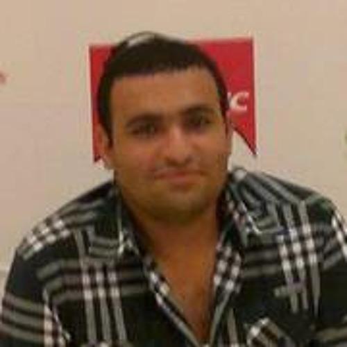 Mohamed A Abdel Halim's avatar