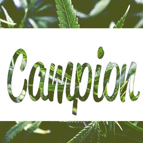 CampionDubz's avatar