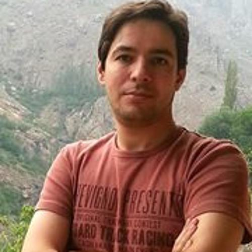 Ali Sedighi 1's avatar