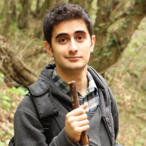 Sina Parsnejad's avatar