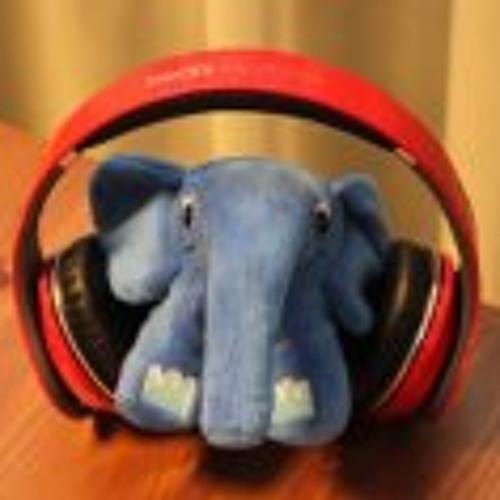 Thomas Dik 2's avatar