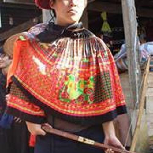 Phan Tan Hoang's avatar