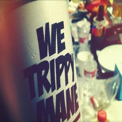 TrippyMane23's avatar