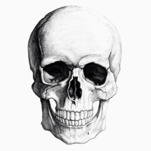 brunoreitter's avatar