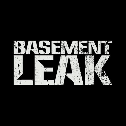 Basement Leak's avatar