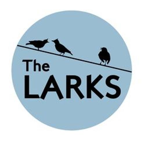 The Larks's avatar