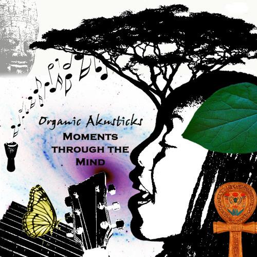 Organic Akusticks's avatar