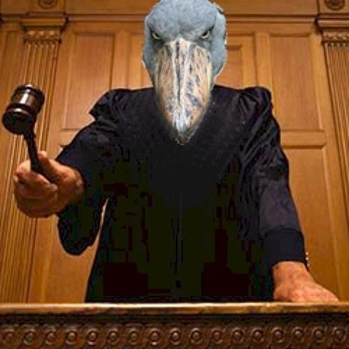 Judge Songbird's avatar