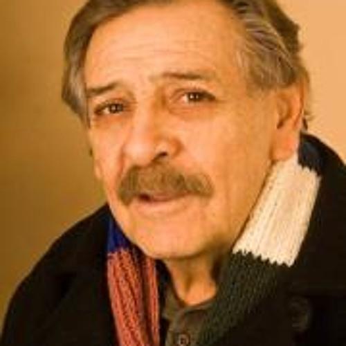 Felix Estrada Fimbres's avatar