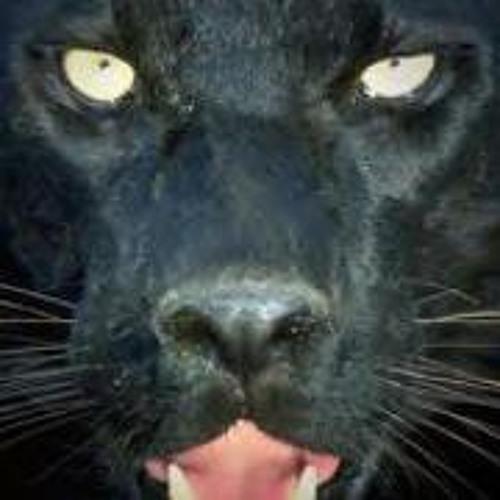 Didier Claudon's avatar