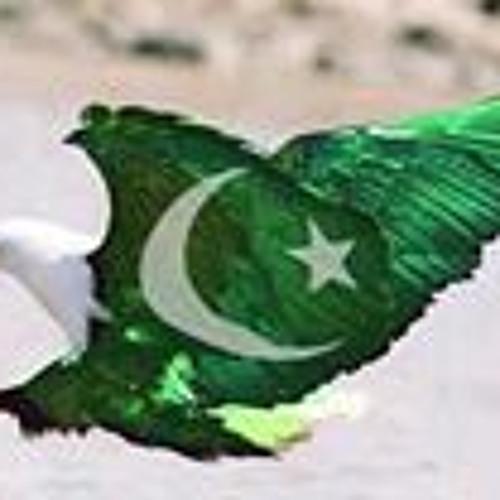 Hasan Ahmed 20's avatar