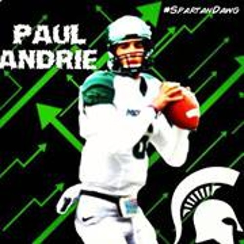 Paul Andrie's avatar