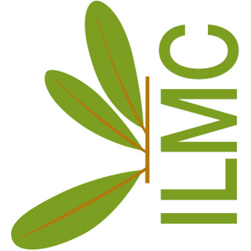 ILMC's avatar