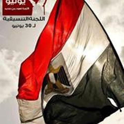 Dina Fouad ShaLaby's avatar